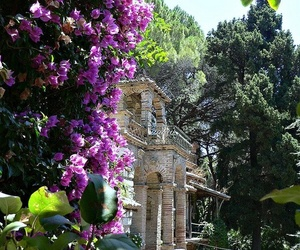 italy, sicily, and spring image