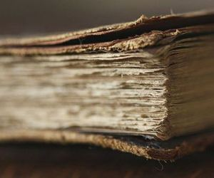 beige, bokeh, and book image