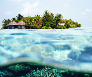 sea, blue, and exotic image