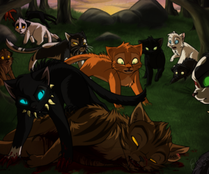 cats, warrior cats, and firestar image