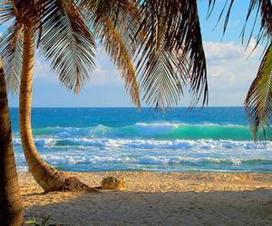 bikini, relaxing, and colors image
