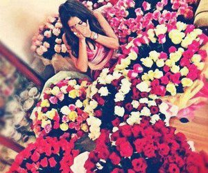 flowers, love, and rose image