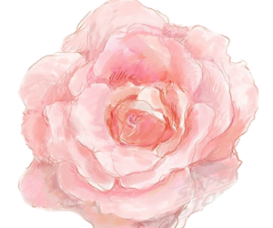 75 images about flower png on we heart it see more about flowers pink and rose image mightylinksfo