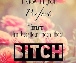 bitch, perfect, and better image