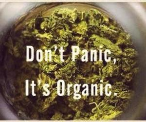 weed, drugs, and organic image