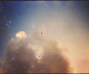 birds, dreamy, and clouds image