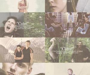 Clove, cato, and the hunger games image