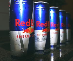bull, drink, and energy image
