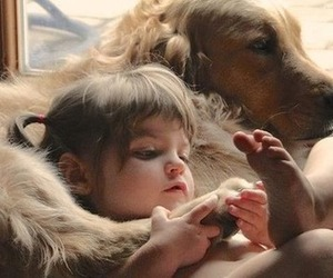 dog, animal, and baby image