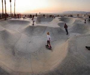 skate park venice beach image
