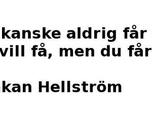 hh, håkan hellström, and valborg image