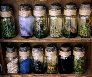 bottles, nature, and wiccan image