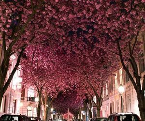 art, pink, and tree image