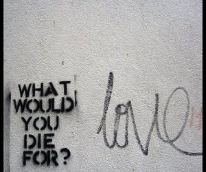 love, quotes, and die image