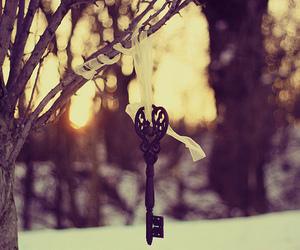 key, tree, and winter image