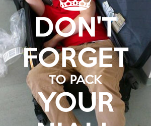 pack and niall horan image