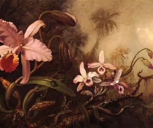 martin johnson heade, orchids and a beetle, and c.1885-1895 image