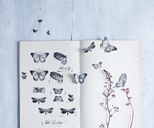 butterfly, book, and art image