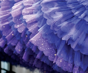 purple, skirt, and blue image