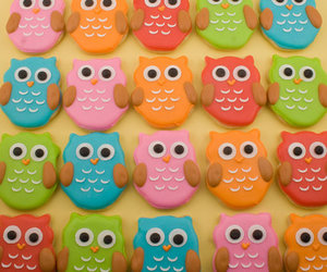 biscuit and owl image