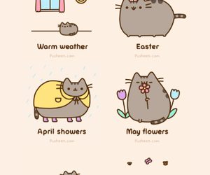 cat, spring, and cute image