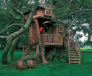 tree, tree house, and house image