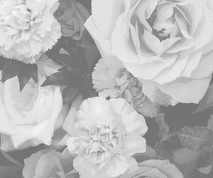 black and white, flowers, and flores image