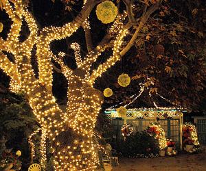 decor and tree image