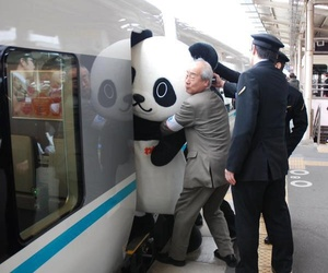 japan, panda, and funny image