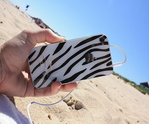 iphone, beach, and zebra image