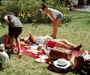 vintage, picnic, and friends image