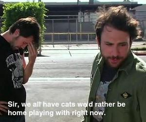 mac, it's always sunny, and funny daily image