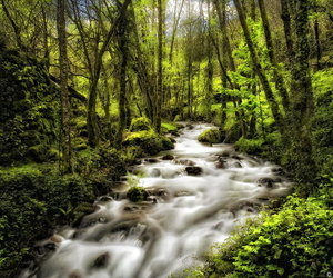 gorgeous, river, and stream image