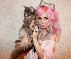 cat, audrey kitching, and pink image