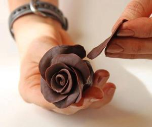 chocolate and rose image