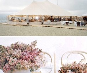 beach, floral, and food image