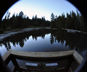 fish eye and photography image