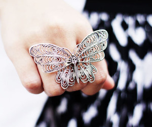 butterfly, ring, and fashion image
