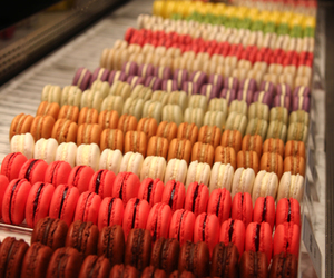 food, macaroons, and yum image