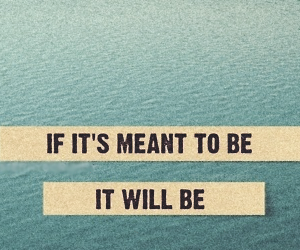 quote, will, and meant image