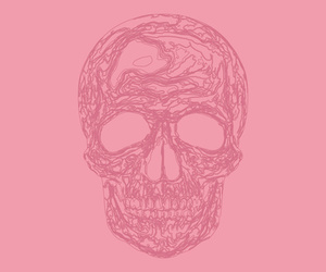 pink, background, and skull image