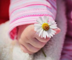 flowers, cute, and baby image