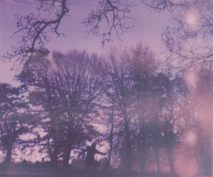 vintage, nature, and gfh image