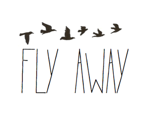 fly, bird, and away image