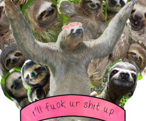 meme, sloth, and sloths image