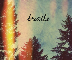 breathe, tree, and quote image