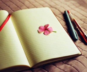 book, write, and flower image