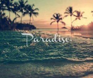 beach, beautiful, and garden image