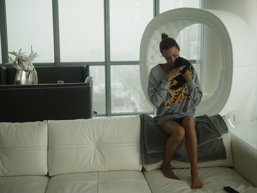 apartment, brunet, and kitten image