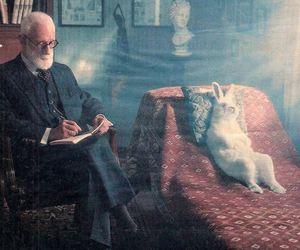 rabbit, freud, and bunny image